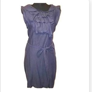 Gap Sleeveless Ruffle Dress Slate Blue Size 14